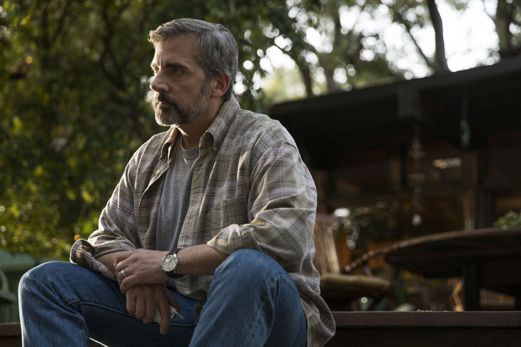 My Beautiful Boy Photo_Steve_Carell.png